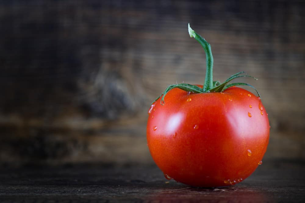 how to grow Champion tomatoes
