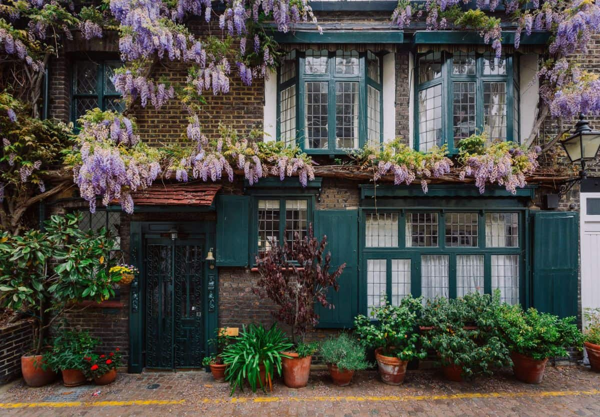 how should my garden look when I'm selling my home