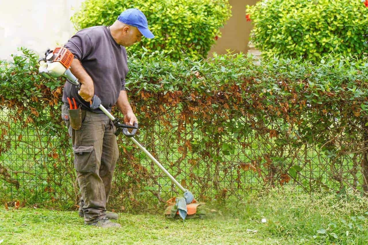 are lawn edgers and lawn trimmers the same